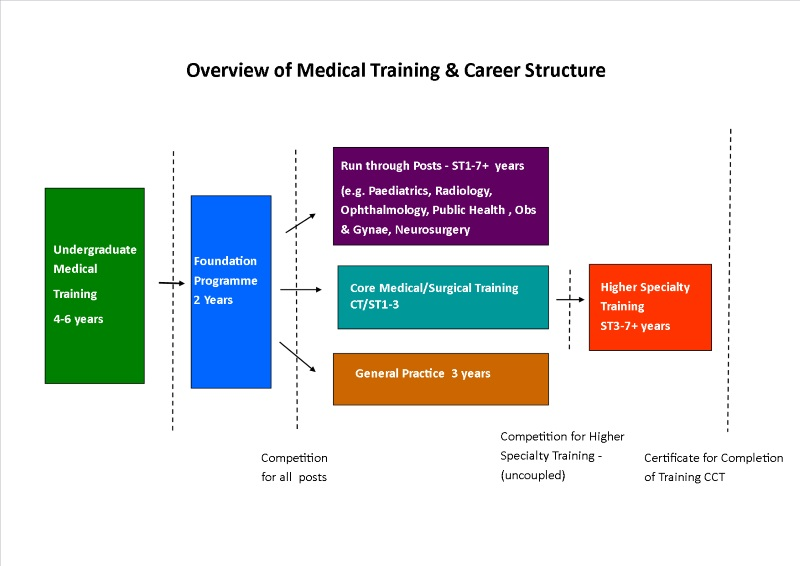 Medical Career overview