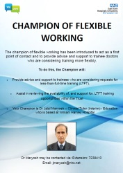 Champion of Flexible Working Poster